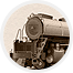 Company Icon for Union Pacific Railroad Museum